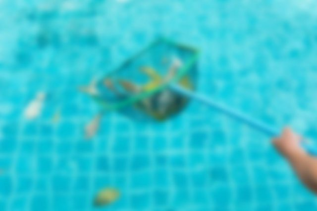 Protect Your Pool from Freeze Damage